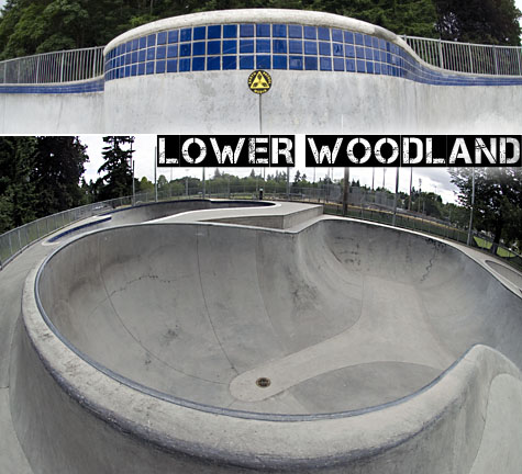 Lower Woodland Skatepark in 3D on Earth Patrol