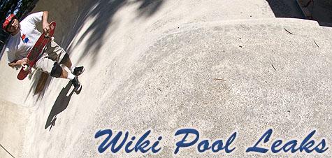Wiki Pool Leaks on Earth Patrol